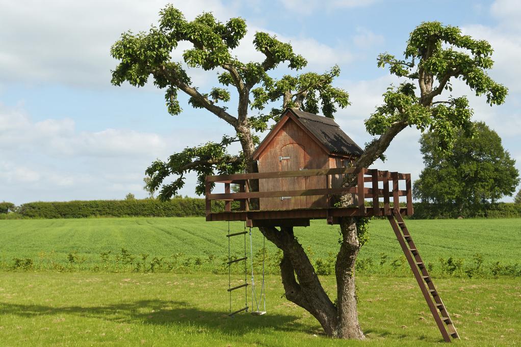 cabane en bois essences prix d 39 une cabane en bois ooreka. Black Bedroom Furniture Sets. Home Design Ideas