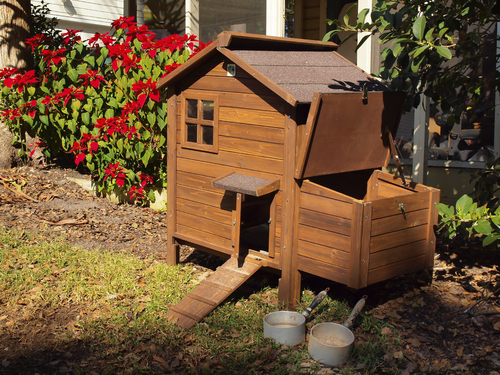 cabane poule conseils pour fabriquer votre cabane poule. Black Bedroom Furniture Sets. Home Design Ideas