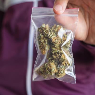 Trafic de cannabis