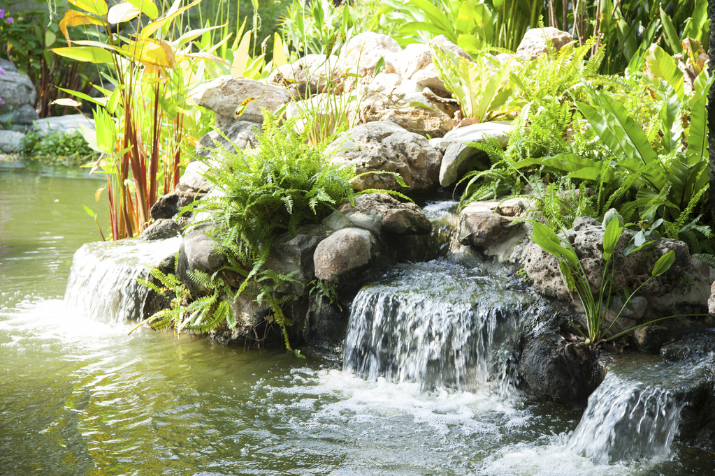 D co jardin bassin for Bassin cascade jardin