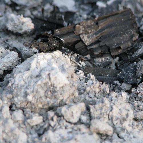 Cendres de bois
