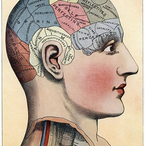 Le cerveau est malléable