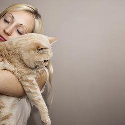 10 pensées de chat (dont les humains devraient s'inspirer)