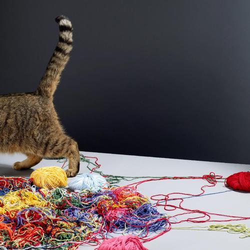 Comment tricoter un châle en laine ?