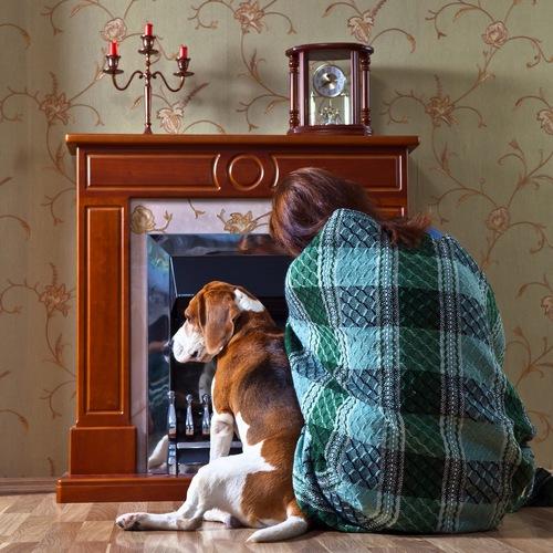 se chauffer au bois pourquoi et comment ooreka. Black Bedroom Furniture Sets. Home Design Ideas
