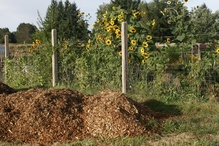 Compost en tas