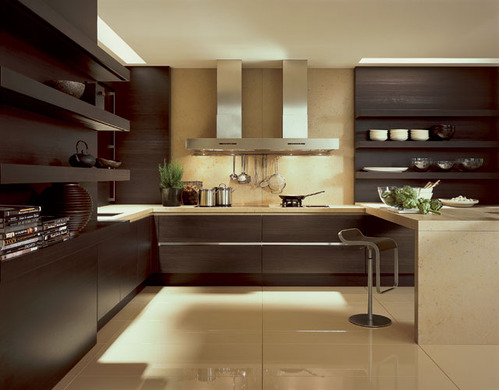 photo le guide de la cuisine cuisine amenag e mati re bois. Black Bedroom Furniture Sets. Home Design Ideas