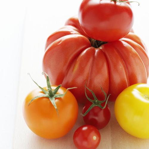 La tomate : généreuse