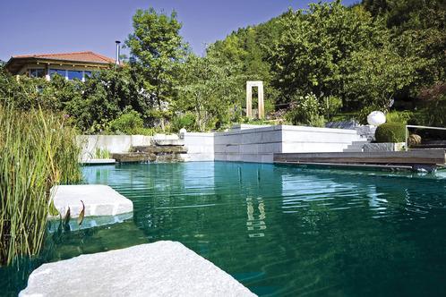Filtration naturelle pour votre piscine ooreka for Prix piscine naturelle