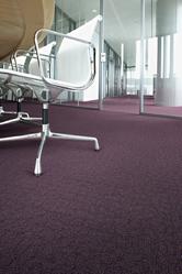 Moquette de bureau violette
