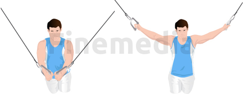 Exercice de l'écarté avec poulie à vis