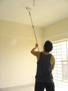 Il est important que le plafond possède un état de surface approprié à la finition que vous avez choisie.