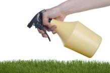 Engrais herbe