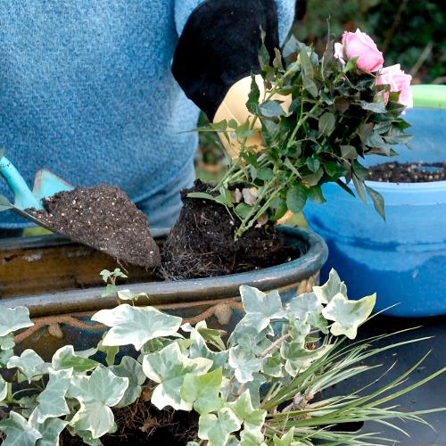 Faire une jardinière  Jardinage