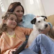 comment devenir famille d 39 accueil pour chien ooreka. Black Bedroom Furniture Sets. Home Design Ideas