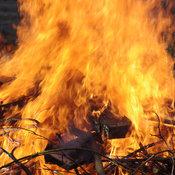 Faire du feu dans son jardin : interdictions, précaution - Ooreka