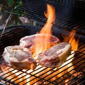 Le foyer de barbecue