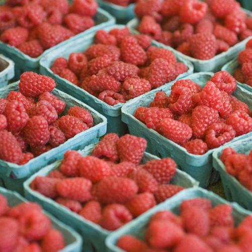 Misez sur les fruits frais