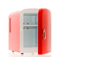 Le mini réfrigérateur