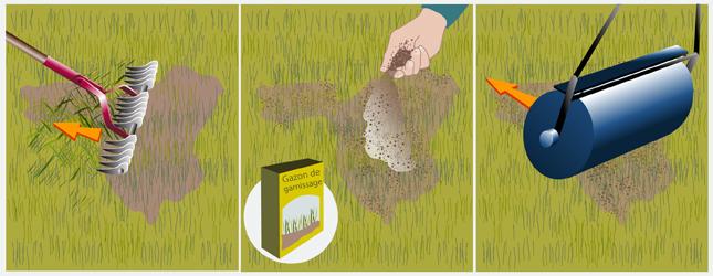 Entretenir une pelouse ooreka - Arrosage gazon apres semis ...
