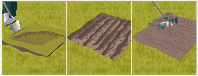 Cas 1 : préparez le sol dans le cas d'une pelouse à rénover