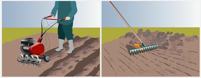 Enlever le gazon - Gazon