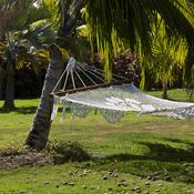 comment accrocher un hamac un arbre ooreka. Black Bedroom Furniture Sets. Home Design Ideas