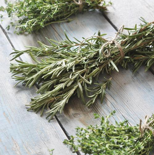 Des herbes aromatiques dans le cendrier