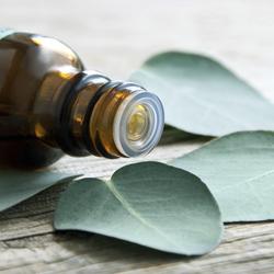 Quelles huiles essentielles contre la gueule de bois ?