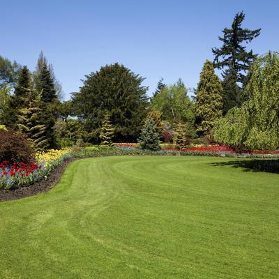 Check-list pour préparer votre jardin à l'arrivée du printemps
