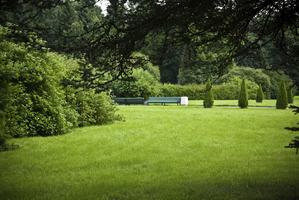 Jardin paysager - Ooreka