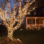 Illuminer un jardin pour Noël - Décoration