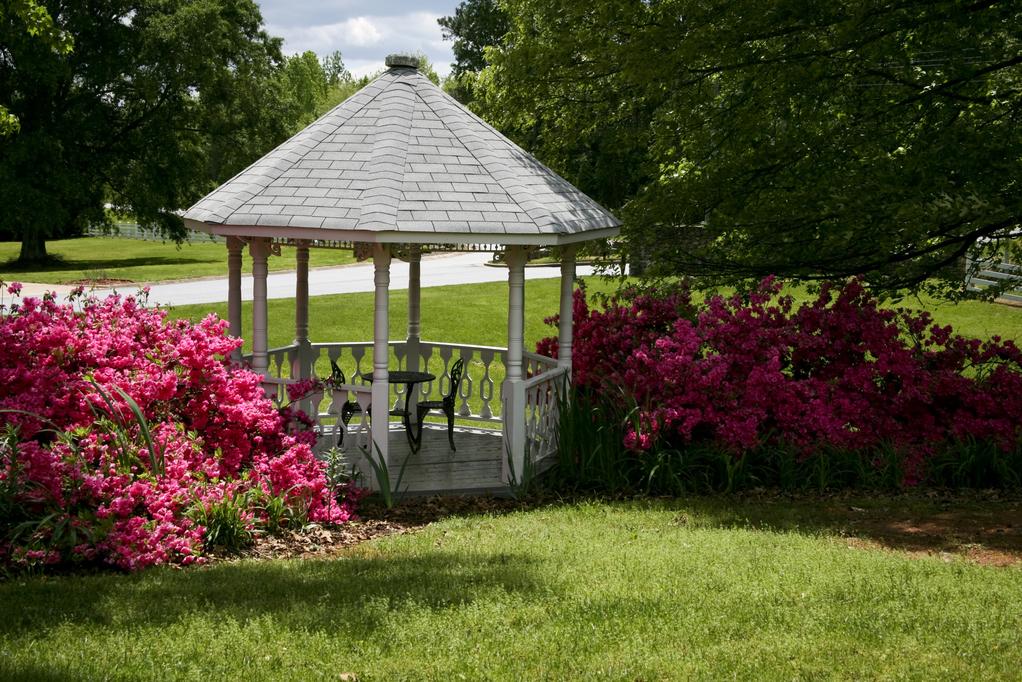 Kiosque de jardin bois structure et essences des bois for Structurer un jardin