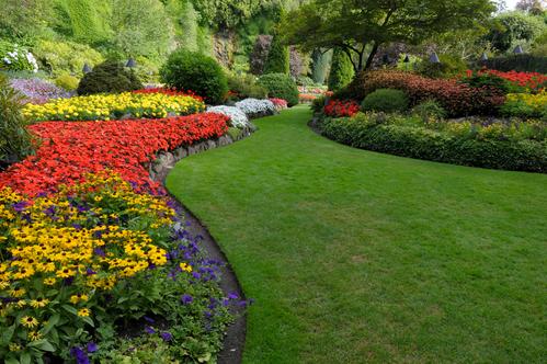 Parterre de fleurs comment faire ooreka - Structurer son jardin ...
