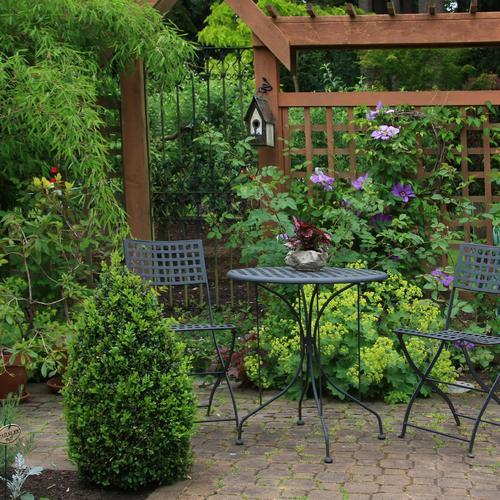 Creer Un Jardin A L Ombre Amenagement De Jardin