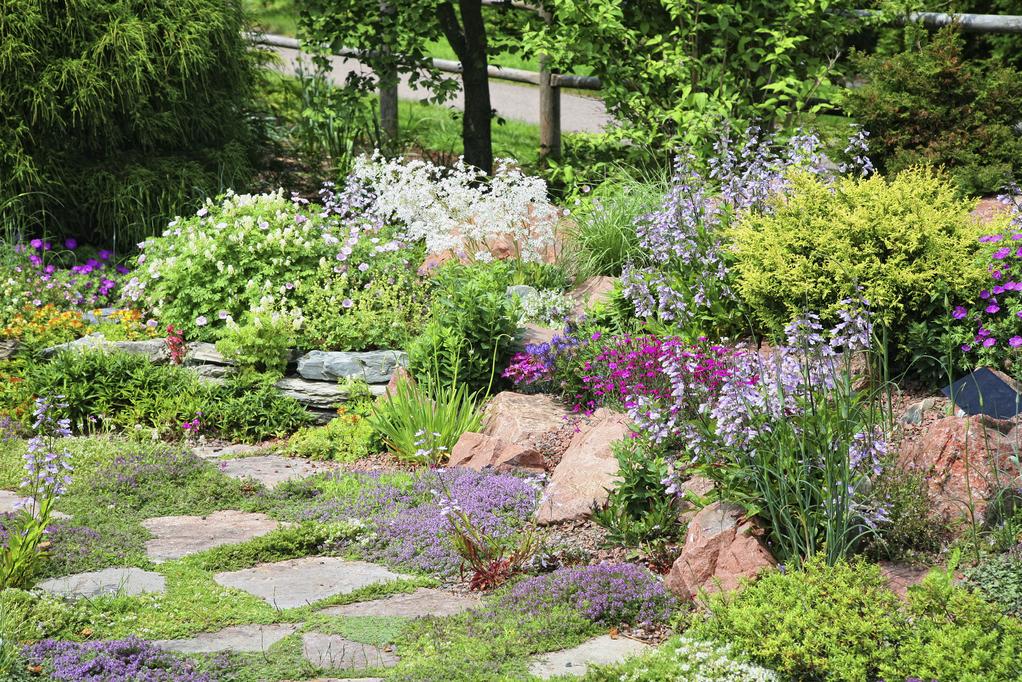 Paillage min ral crit res de choix et prix ooreka for Photo jardin mineral et vegetal
