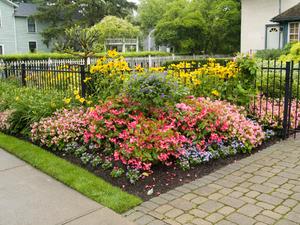 Aménagement de jardin de ville