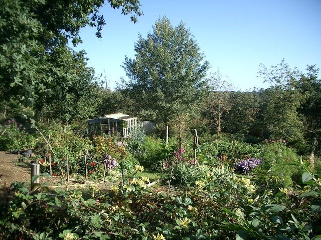 Quels légumes planter au printemps ?