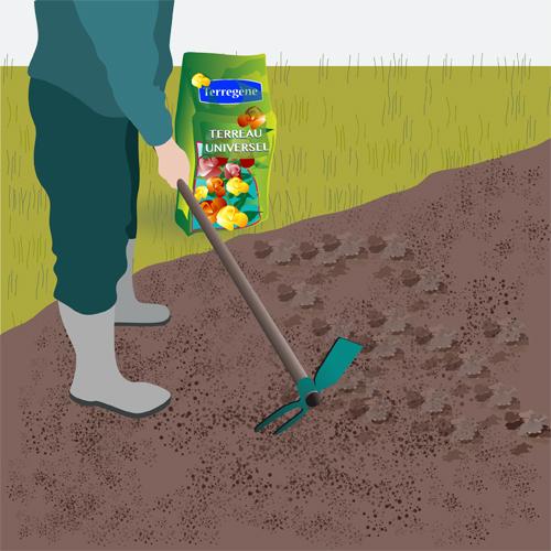 Préparez le sol