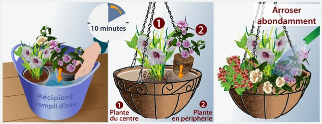 Cr er une suspension fleurie jardinage for Suspension plante exterieur