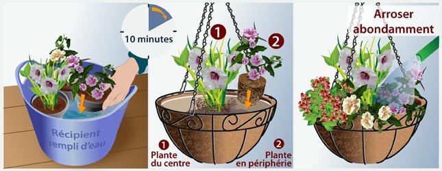 Cr er une suspension fleurie jardinage for Plante suspension exterieur