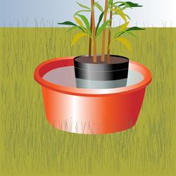 conseils pour planter des v g taux dans son jardin. Black Bedroom Furniture Sets. Home Design Ideas
