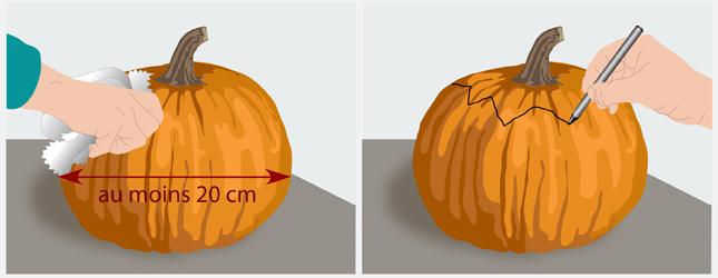 Pr parer une citrouille d halloween d coration - Faire griller des graines de citrouille ...