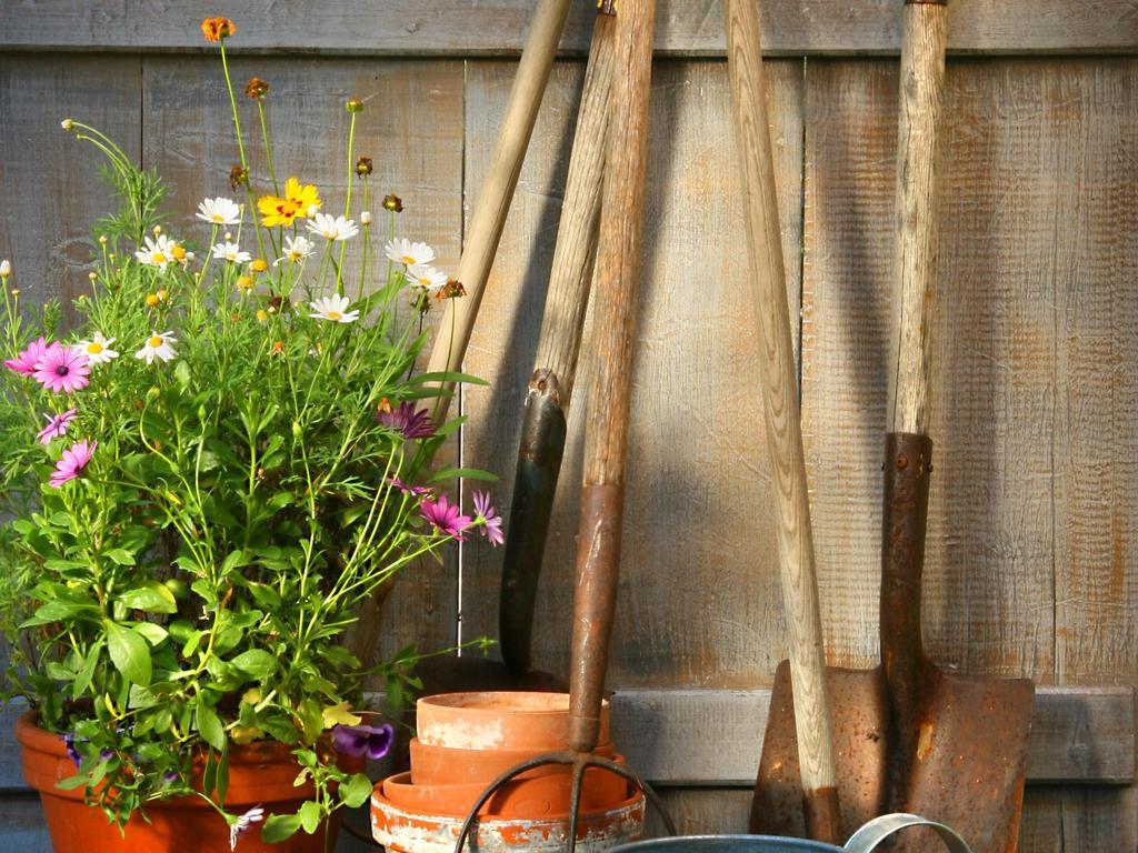 Jardinage raisonné