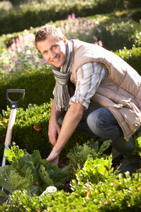 Service jardinage
