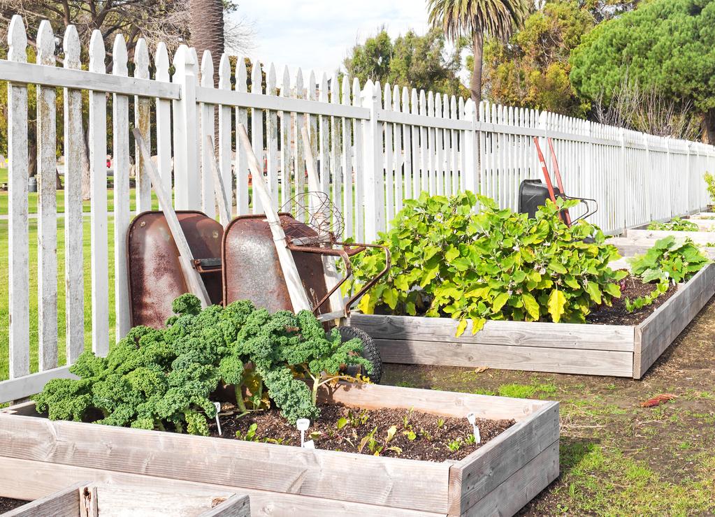 Jardini re en bois caract ristiques usages prix ooreka for Jardin que planter