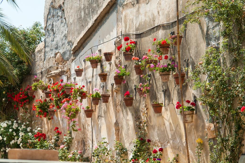 Jardiniere Murale Modeles Materiaux Et Prix Ooreka
