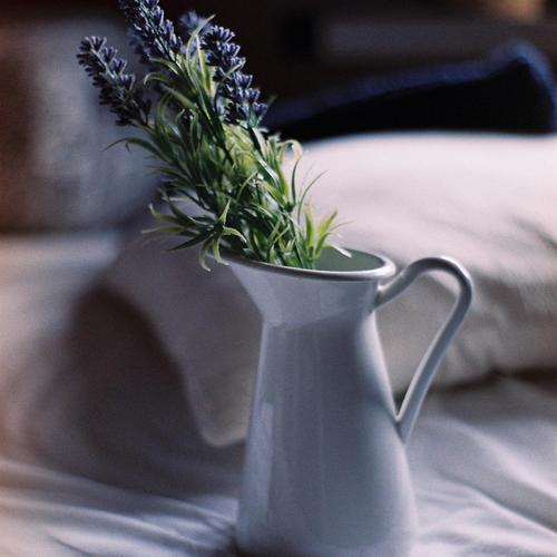 10 moyens simples de lutter contre les odeurs culinaires cuisine. Black Bedroom Furniture Sets. Home Design Ideas