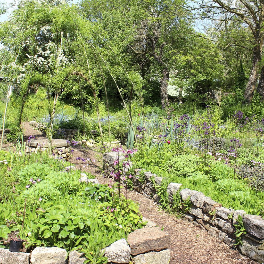 Les légumes à planter en mai