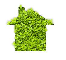 Construction maison écologique